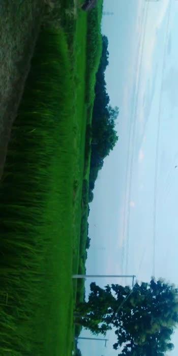 #nature #nature lover #nature
