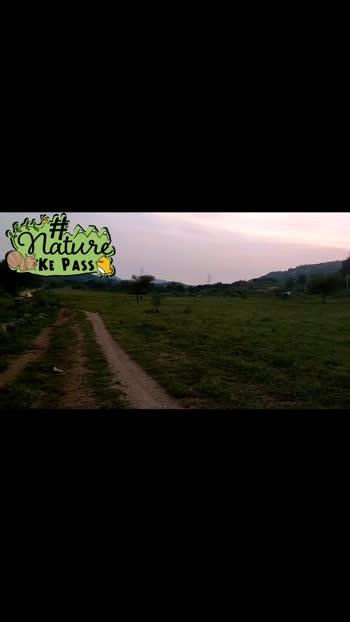 #nature @nature