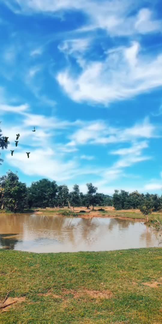 #captured #hahatv #lol-roposo #nature #wowtv #roppsostar #roposo-beats #glancexroposo #featured #digichannel #sportstv #artist #birds #lakeview #technology #channels #beats #lovegoodfeelgood #gabruchannel